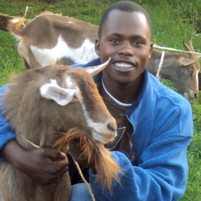 Boy Holding Goat