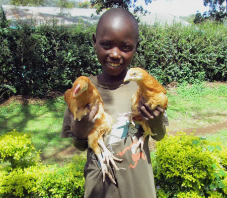 Child Holding Chickens